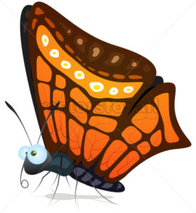 Butterfly - Vectorsforall