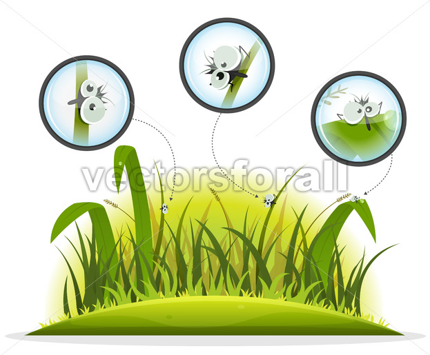 Funny Insect Character Inside Spring Grass - Vectorsforall