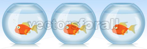 Gold Fish Life And Times In Aquarium - Vectorsforall