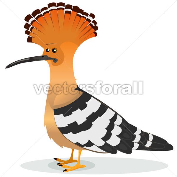 Hoopoe Bird - Vectorsforall