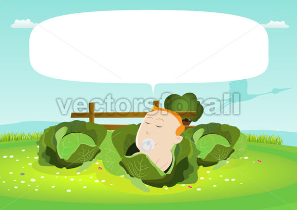 Newborn Baby In A Cabbage - Vectorsforall