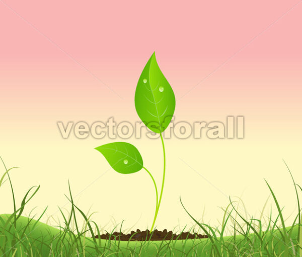 Spring Plant Growing In A Garden - Vectorsforall