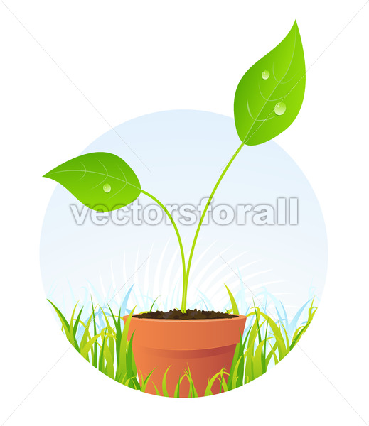 Spring Plant Seed In Pot - Vectorsforall