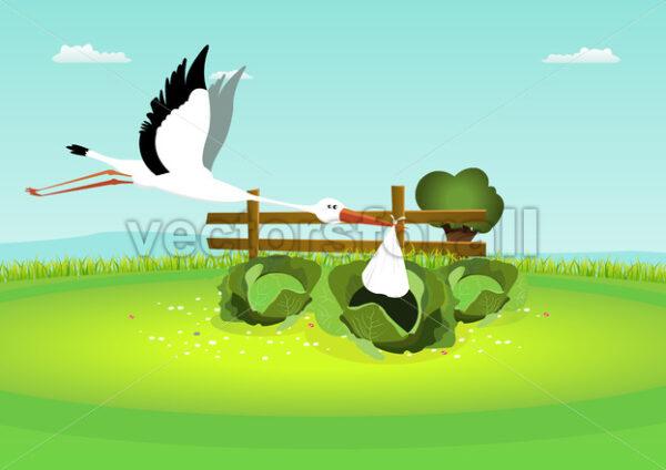 Stork Delivering Baby In Cabbage - Vectorsforall