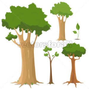Tree Collection - Benchart's Shop