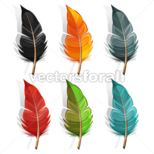 Bird Feather Set - Vectorsforall