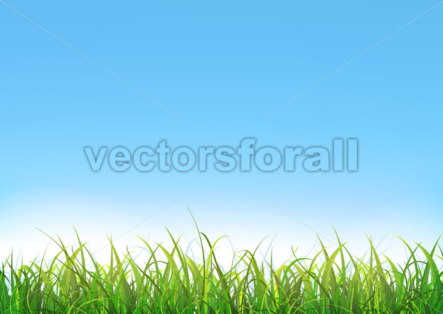 Blue Sky Background With Green Grass - Vectorsforall