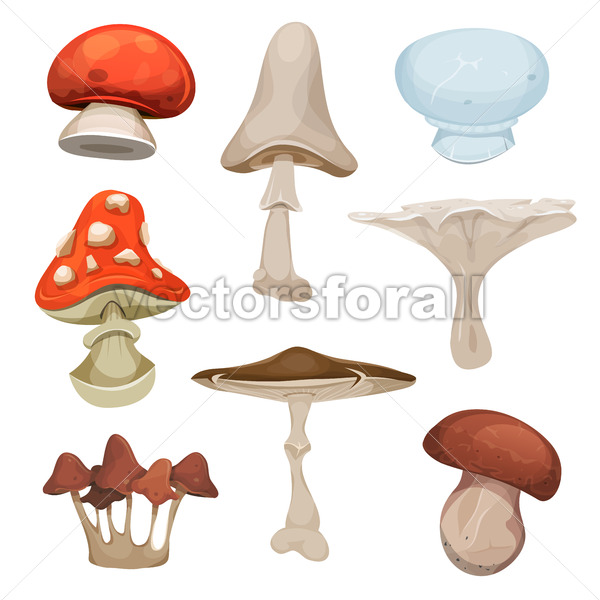 Mushrooms Set - Vectorsforall