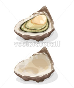 Oyster Shell - Vectorsforall