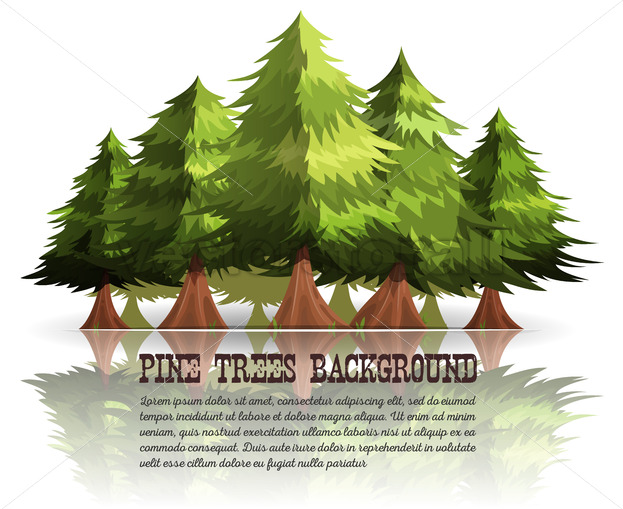 Pine Trees And Firs Background - Vectorsforall