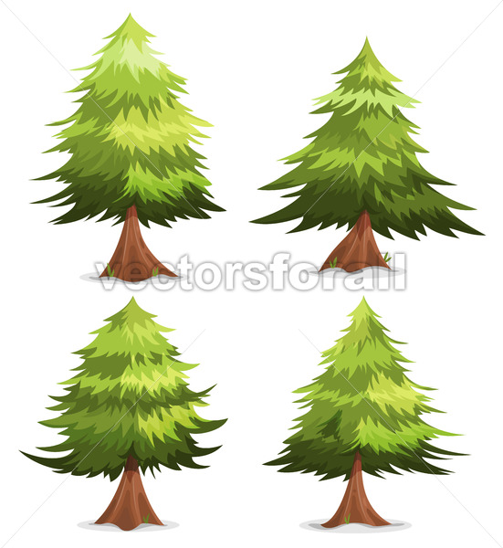Pine Trees And Firs Set - Vectorsforall