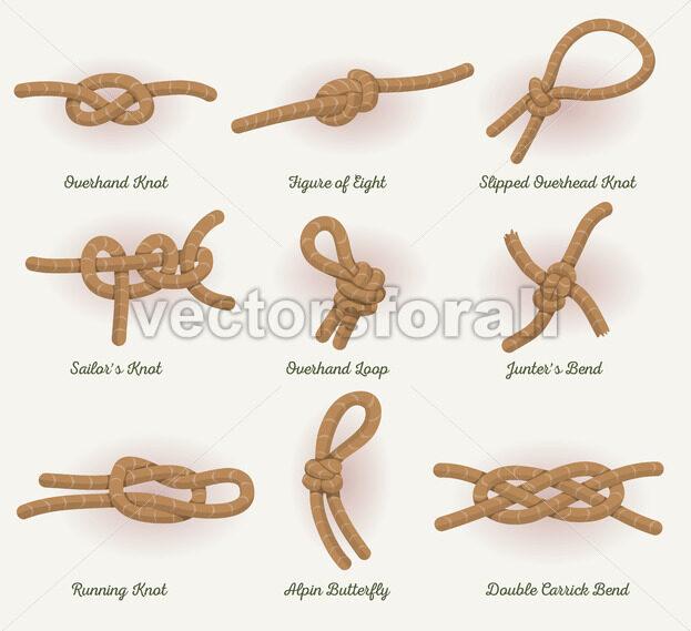 Rope Knots Set - Vectorsforall