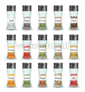 Spices, Pepper, Seeds And Condiment Set - Vectorsforall