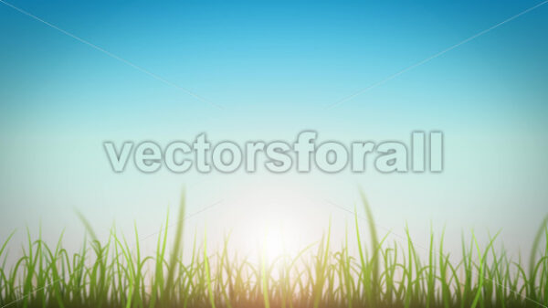 Grass Leaves On Beautiful Sky Background Loop - Vectorsforall