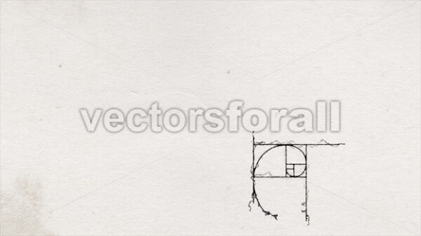 Golden Ratio On Old Vintage Ink Paper Background Animation - Vectorsforall