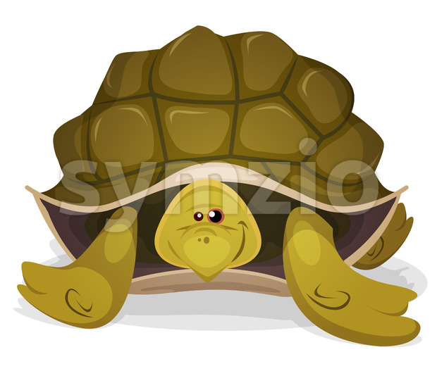 Cute Turtle Character Stock Vector