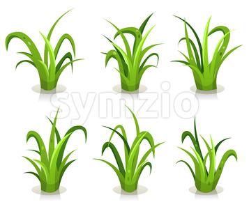 Grass Leaves Set Stock Vector