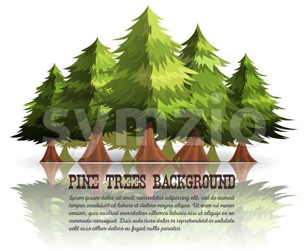 Pine Trees And Firs Background Stock Vector