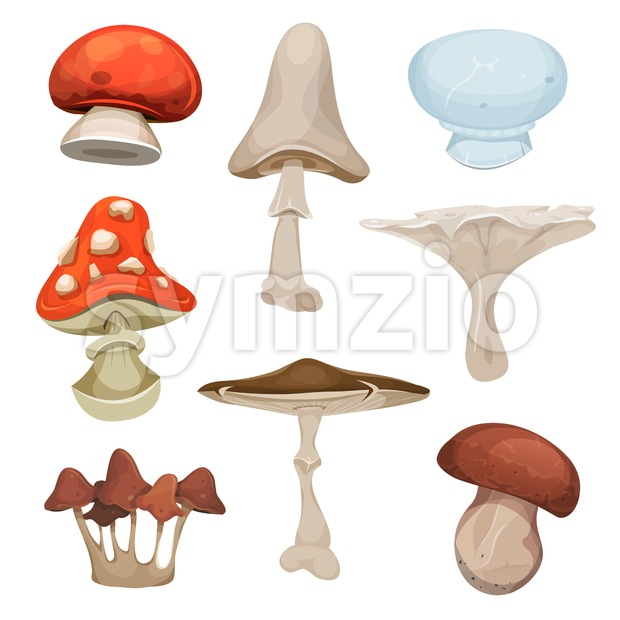 Illustration of a cartoon set of various species of mushrooms, with ceps, boletus and amanita