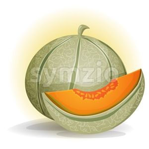 Melon Stock Vector