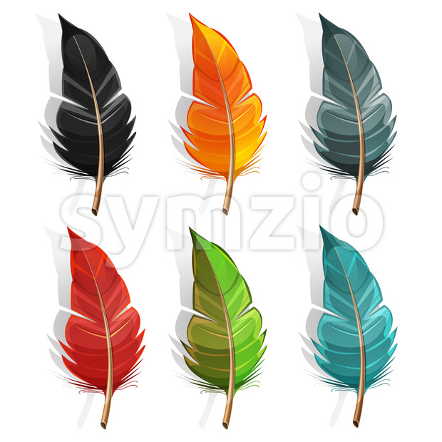 Bird Feather Set Stock Vector