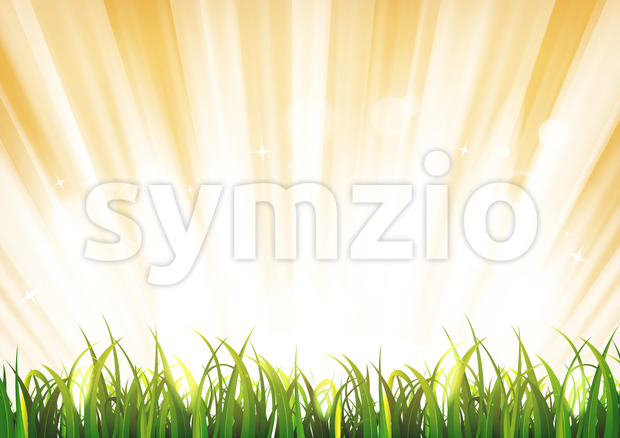 Summer Sunshine Background With Grass Leaves Stock Vector