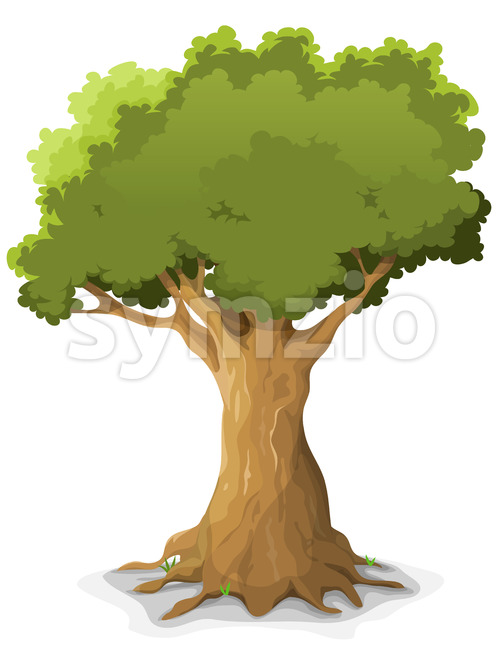 Spring Oak Tree Stock Vector