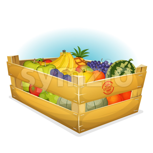 Basket Of Healthy Organic Fruits Stock Vector
