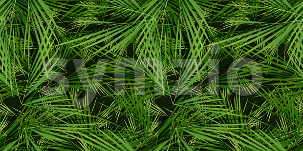 Seamless Palm Trees Leaves Background Stock Vector