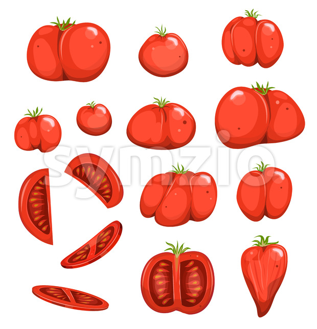 Red Tomatoes Set Stock Vector