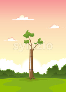 Spring Young Tree - Morning Of Life Stock Vector
