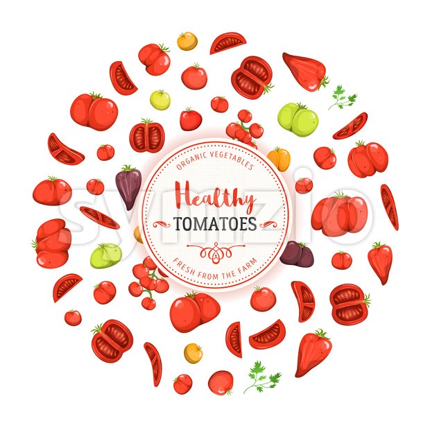 Illustration of a design healthy food banner, with various tomato species, for vegetarian and vegan food or italian meals