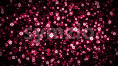 Seamless Looped Abstract Flowers Background Stock Video