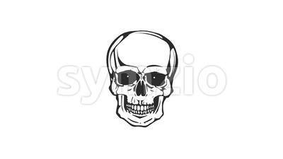 Dead Skull Head Laughing Loop Stock Video