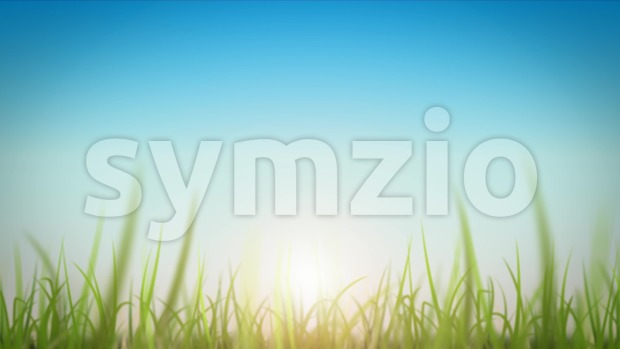 4k animation of a loopable beautiful nature background with zoom in on blades of grass moving with the wind and ...